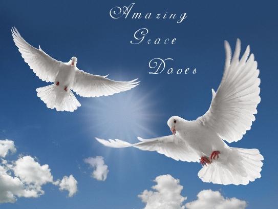 Amazing Grace Doves